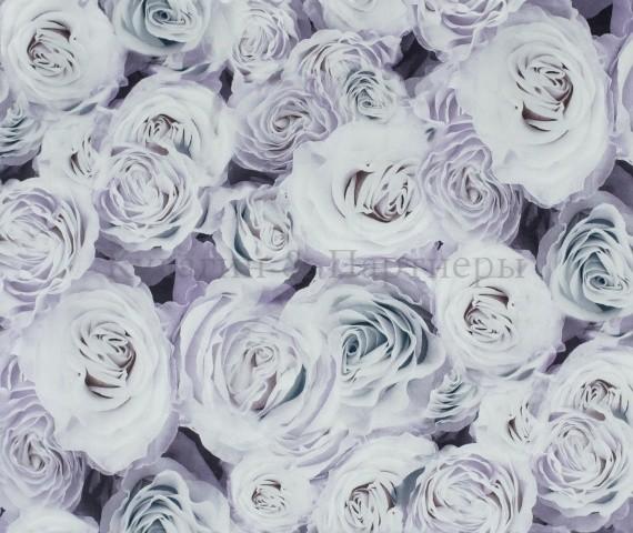 Обивочная ткань Rose 03